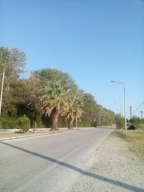 Fanari Yolları